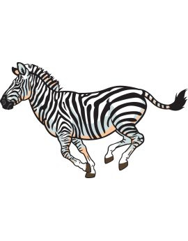 Sticker zèbre d'Afrique