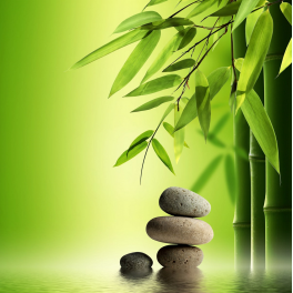 tableau zen galets bambou - Bambou Color
