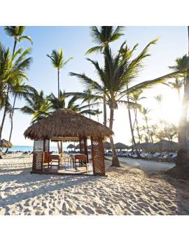 Tableau République Dominicaine plage