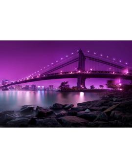 Tableau pont San Francisco