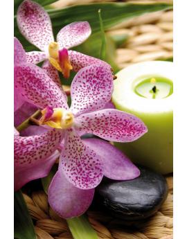 Tableau zen galet fleur