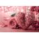 Tableau fleur Rose