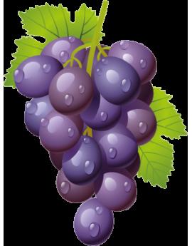 Sticker grappe de raisins noirs