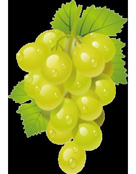 Sticker grappe de raisins verts