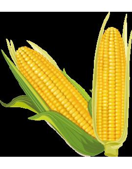 Sticker cuisine maïs