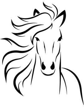 Sticker buste de cheval