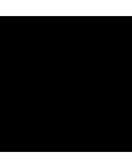 Stickers branche de platane