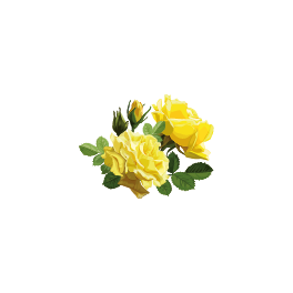 Stickers Fleur Rose Jaune Color Stickers