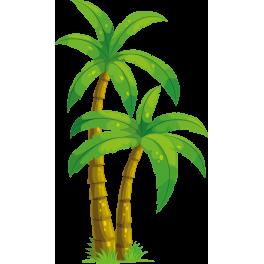 palmier humour