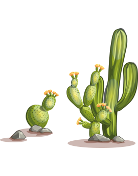 Stickers kit cactus