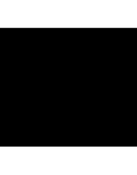 Stickers tête de cheval crinière