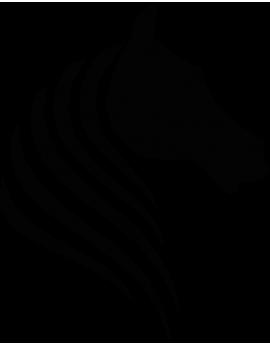 Stickers tête de cheval moderne design