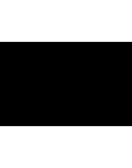 Stickers logo chanel