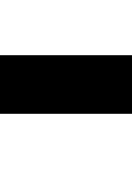 Stickers citation personnalité léonard de Vinci