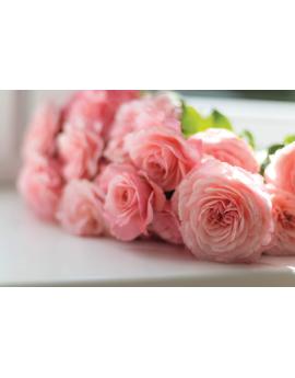 Poster bouquet de rose