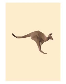 Poster kangourou