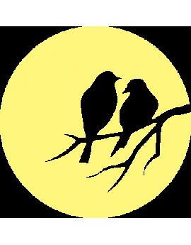 Stickers oiseaux phosphorescents