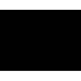 Stickers Chat avec une longue queue