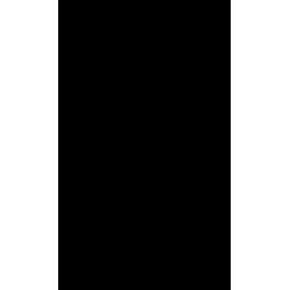 Stickers Basketteur