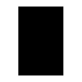 Stickers tête de Cheval