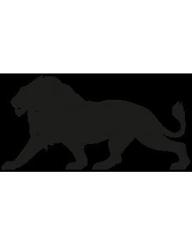 Sticker lion d'Afrique
