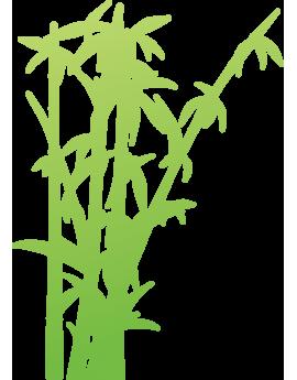 Sticker bambous zen