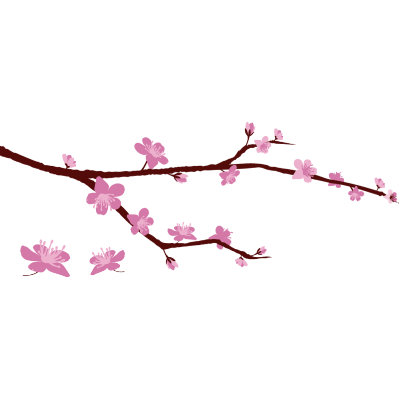 Sticker branche cerisier color stickers - Branche de cerisier japonais ...